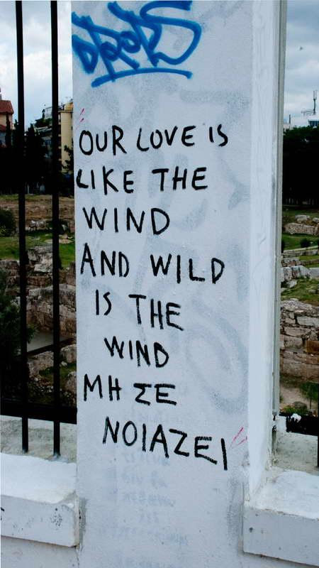 epitoixies wild love viewtag