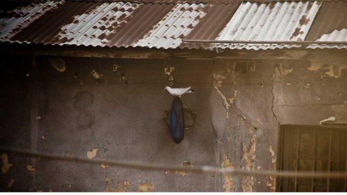 Ιπτάμενος τροχονόμος
